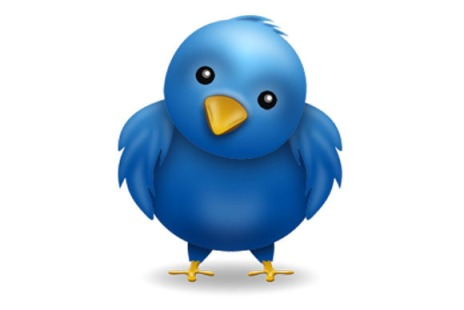 twitter_chubb-100012107-large