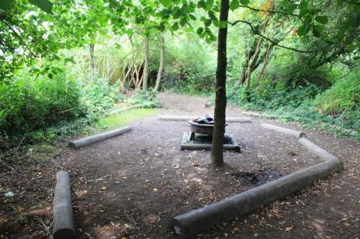 Woodland at Wroxham