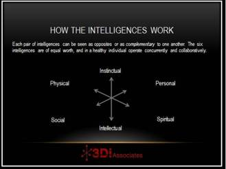 3D Model of Intelligences