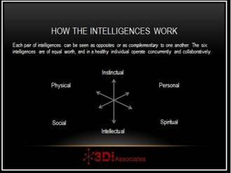 3D Model of Intelligences