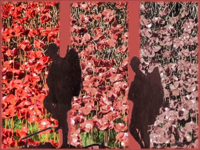 Poppies and soldiers 1
