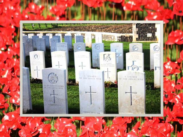 Poppies and Tyne Cot2