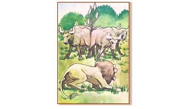 Lion and Oxen with tails tied