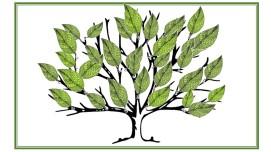 FE Tree