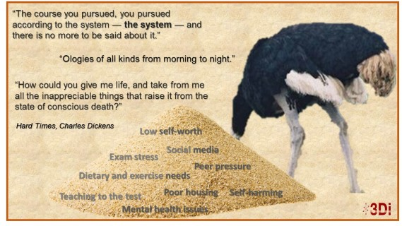 ostrich-in-sand